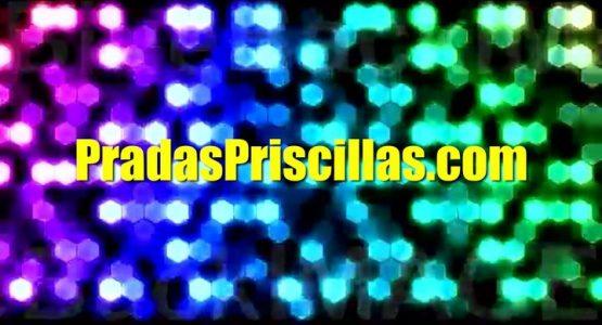 Prada's Priscillas at Brolga Theatre and Convention Centre