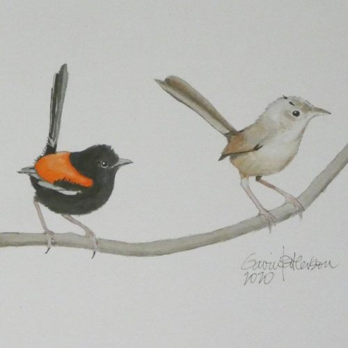The Local Art Scene – A Bird Memoir