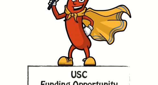 Sausage Sizzle - USC Funding Opportunity 4 TS Maryborough Navy Cadets
